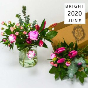 JUNE_13_May_2020_Bright
