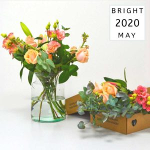 MAY_22_April_2020_Bright